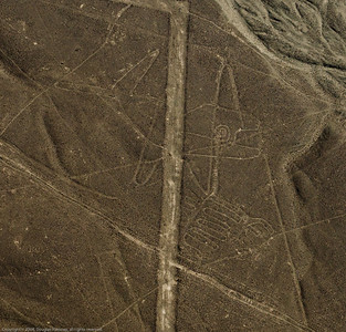 Killer whale. Cropped section of enhanced photo. Nazca Lines, Nazca Peru.
