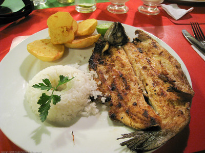 Grilled trout, fresh from the pond. Along the road in Peru.