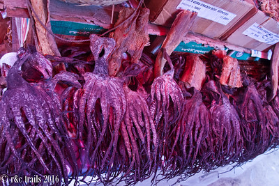 dried squid anyone?