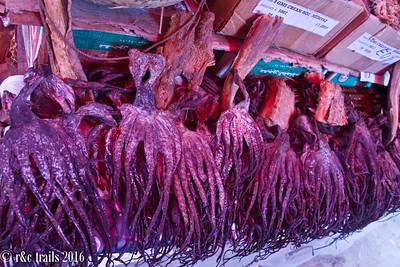 dried squid anyone?