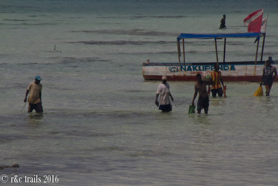 fishermen of jumbiani beach bringing in their catch