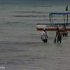 fishermen of jumbiani beach bringing in their catch
