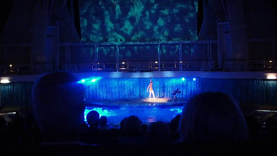 Additional footage of Oasis of Dreams in the Aqua Theater.