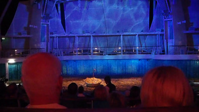 """Part of the Aqua Theater Show """" Oasis of Dreams"""". Great show."""