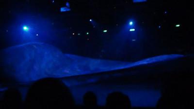 Oasis Ice Show
