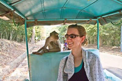 my new monkey friend