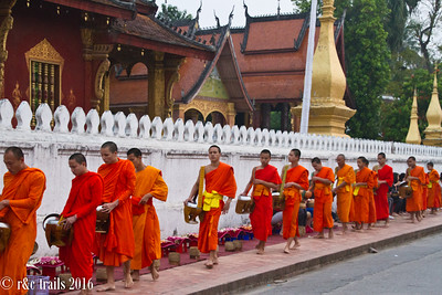 the monks of luang prabang receiving morning alms