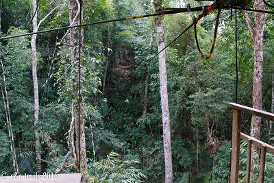 zipline to our treehouse home for 2 nights