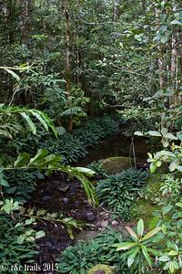 kinabalu park surrounds