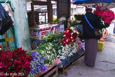 roses, among other flowers, were abundant