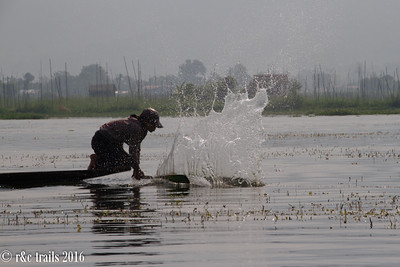one method is to slap the water with a stick to scare fish into a net