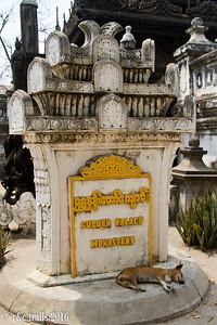temple dog at scwe kyaung pagoda.