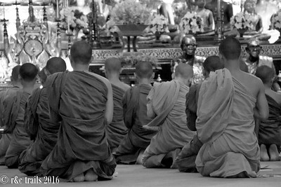 monks at evening prayers - wat chedi luang