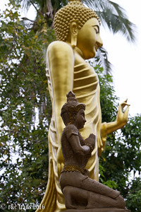 more buddhas at wat ched yod