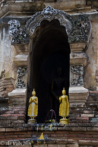 a little alcove filled with buddhas at wat ched yod