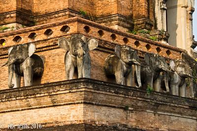 elephants lining wat chedi luang