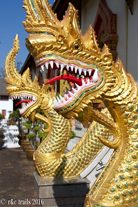 nagas (water serpents) at wat jedyod