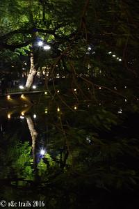reflections on hoan kim lake