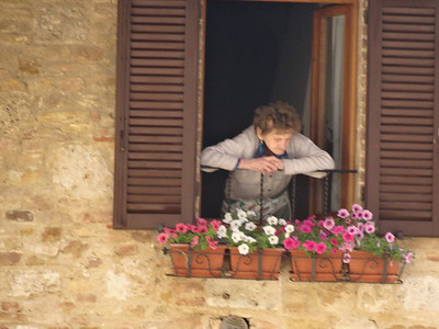 San Gimignano  - A local resident looking down on the village.