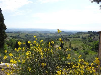 Tuscan Region