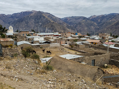 Pinchollo town
