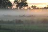 Misty Okavango morning, Chitabe