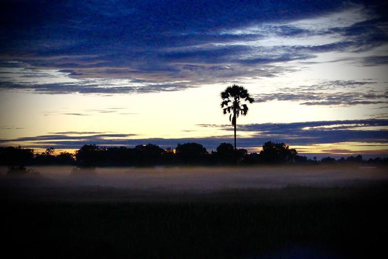 Early morning fog, Chitabe