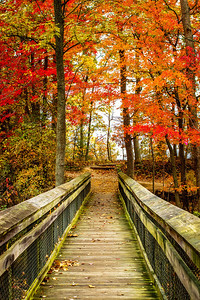 Woodbridge, Virginia, in the fall