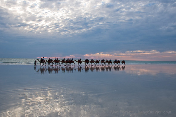 Camel Train on Cable Beach, Broome, Western Australia
