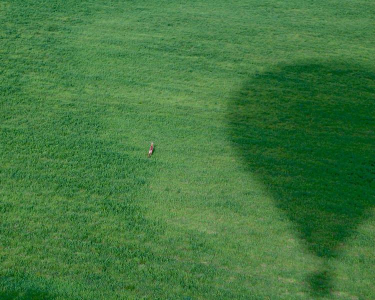 deer and Ballooner eclipse