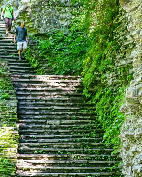 lotsa steps