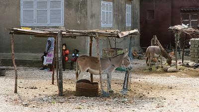 Travel;  Senegal; Joal Fadiouth;  Snegleøen;