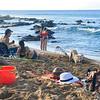 Beach scene at Napili Surf
