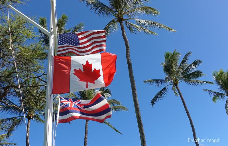 Flags at Napili Surf