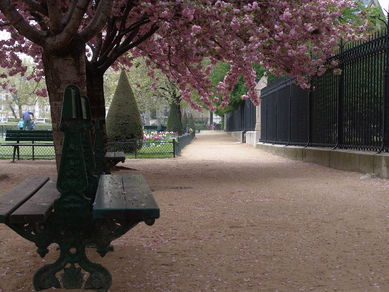 ND3: On three sides of Notre Dame manicured parks invite visitors to stroll the exterior and bring their children ....