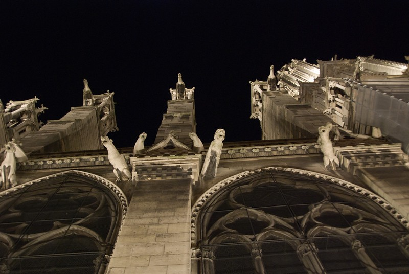 NDex2: Here is one of my favorite views...looking up at the drain-spout gargoyle as they peer down from the side of Notre Dame.