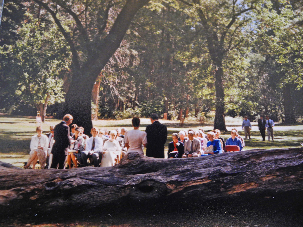 Here the ceremony has just begun and three of our sons on the left had decided to take a stroll. Bored siting and waiting. HUMMM. Good shot of the log.