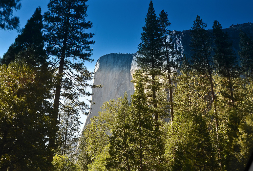 Rock climbers come from around the world to scale El Capitan.