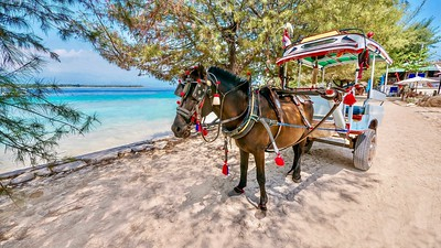 No motorized vehicles allowed on the Gili Islands of Indonesia. You walk, use a bicycle, or take a horse-drawn cart called a cidomo.