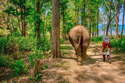 Chiang Mai Province, Thailand