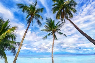 Seaside Coco Palms