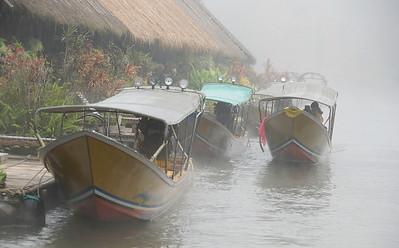 New arrivals at Jungle Rafts