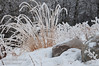 February - Hoar frost on grass and rocks