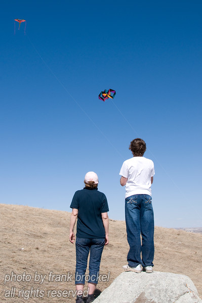 April - It's a windy day on Nosehill in the kites are out (and up)