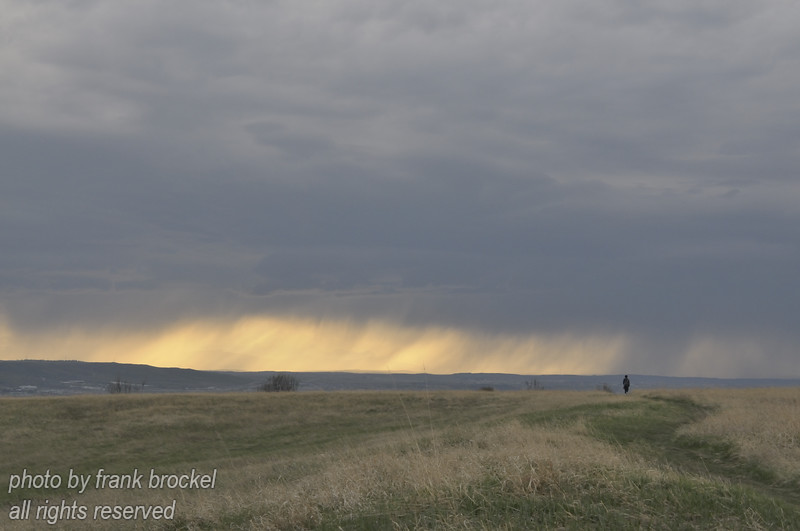 May - A lonely hiker enjoying the wide open spaces of Nose Hill - in the distance a rain squall is shrouding the Rocky Mountains