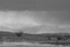 May - A thunder storm moving in from the Rocky Mountains to provide some much needed rain for Nose Hill - in Black and White