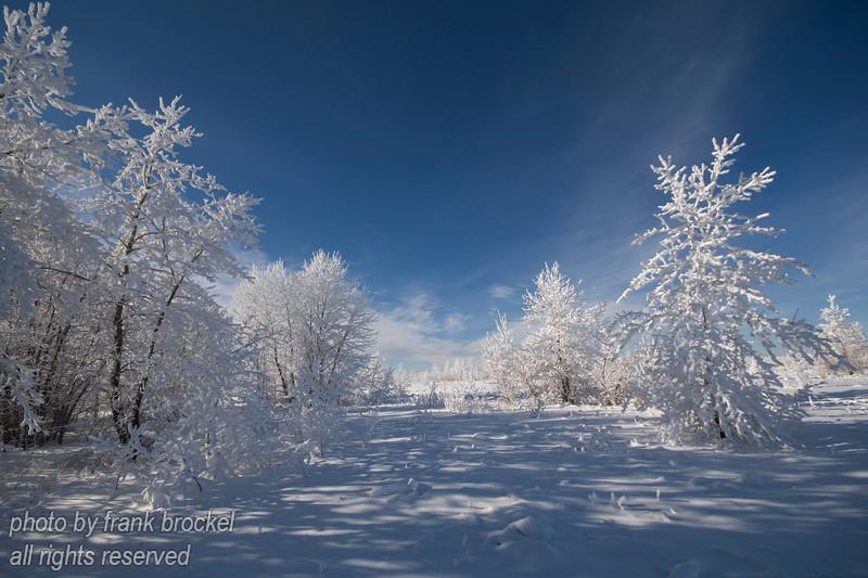 February - Winter Wonderland