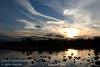 September - The pond at sunset