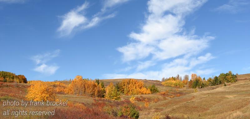 September - Fall on Nosehill