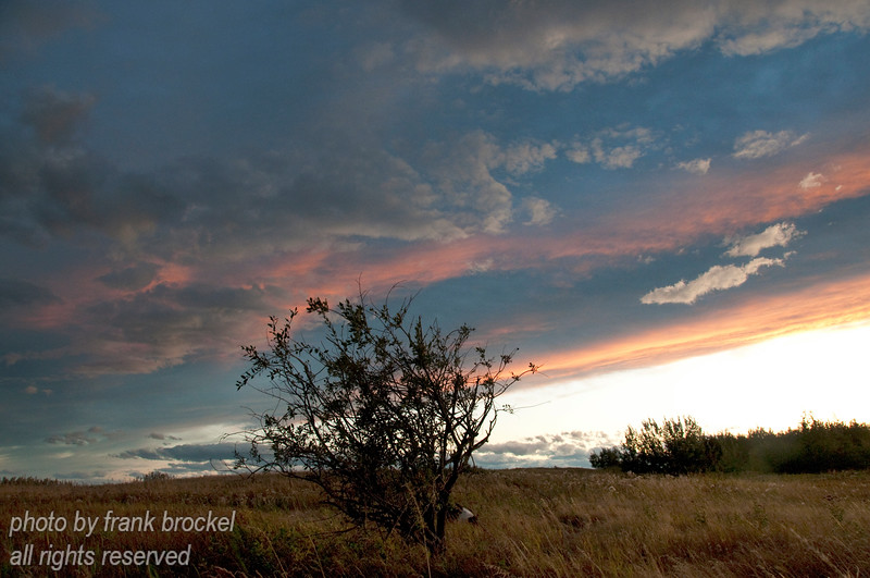September - evening sky